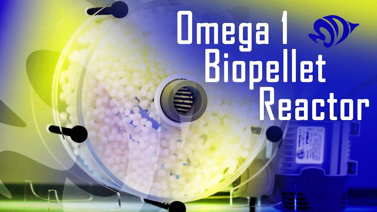 Using A Biopellet Reactor To Lower Your Nitrates: The AquaMaxx Omega 1 Biopellet Reactor