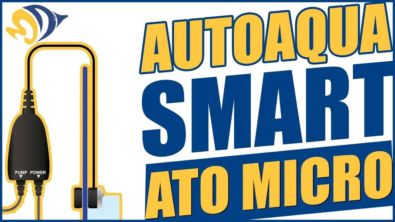 AutoAqua Smart ATO Micro: What YOU Need to Know