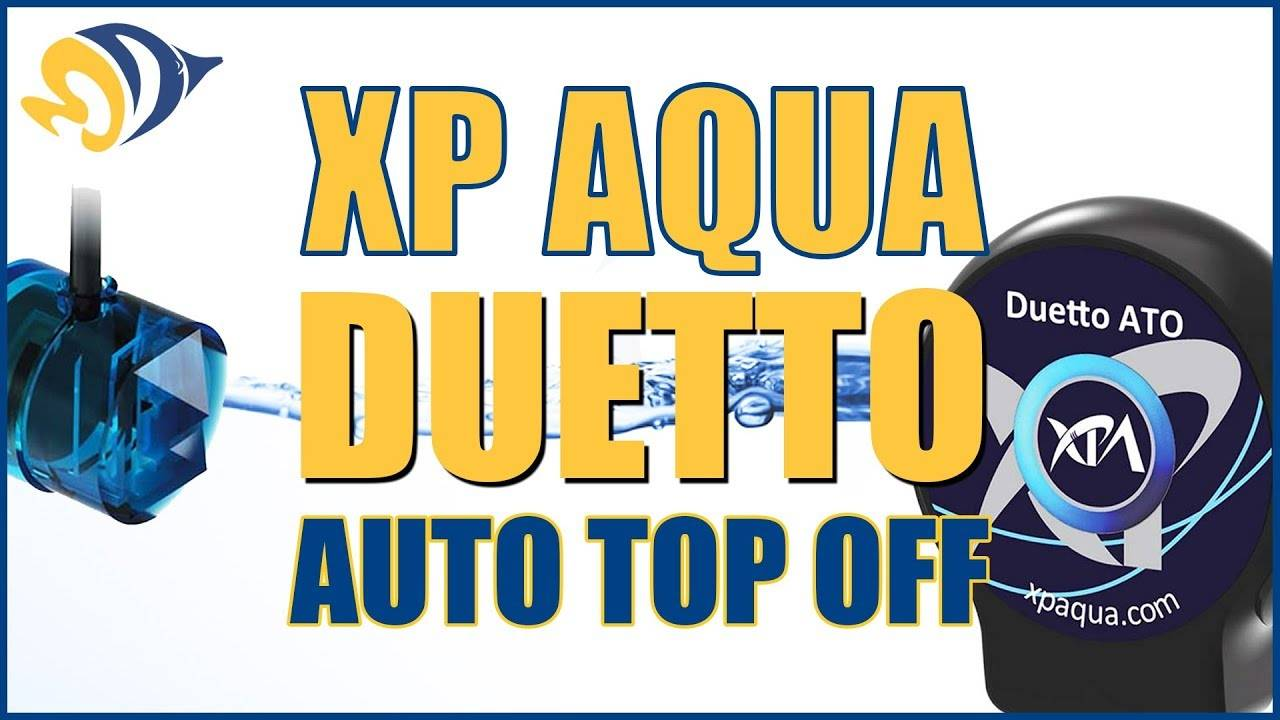 XP Aqua Duetto Dual-Sensor Auto Top-Off - What YOU Need to Know