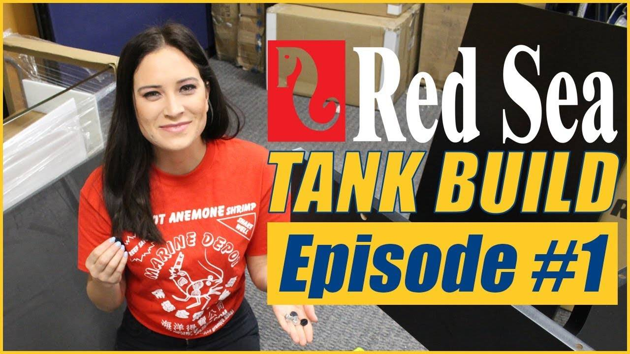 Reefer Deluxe 525 XL Tank Build #1 - LET'S BUILD A TANK!!!