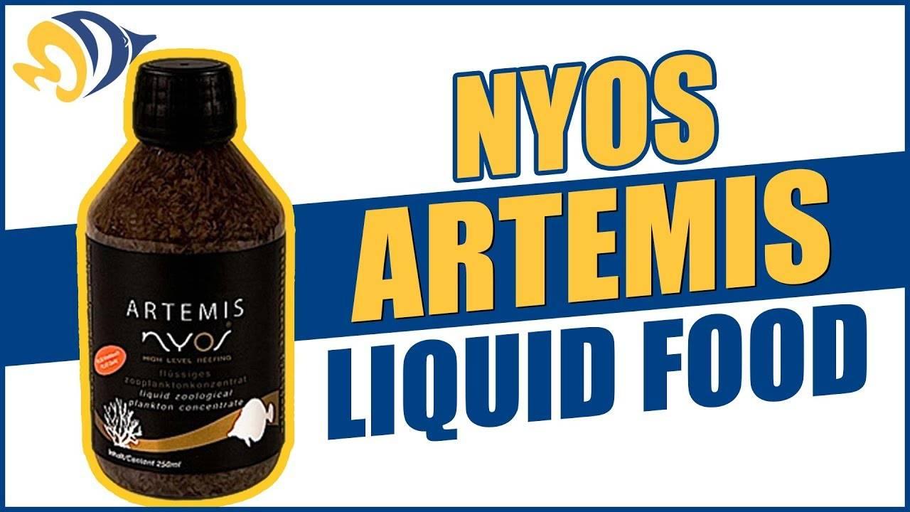 NYOS Artemis Liquid Plankton: What YOU Need to Know