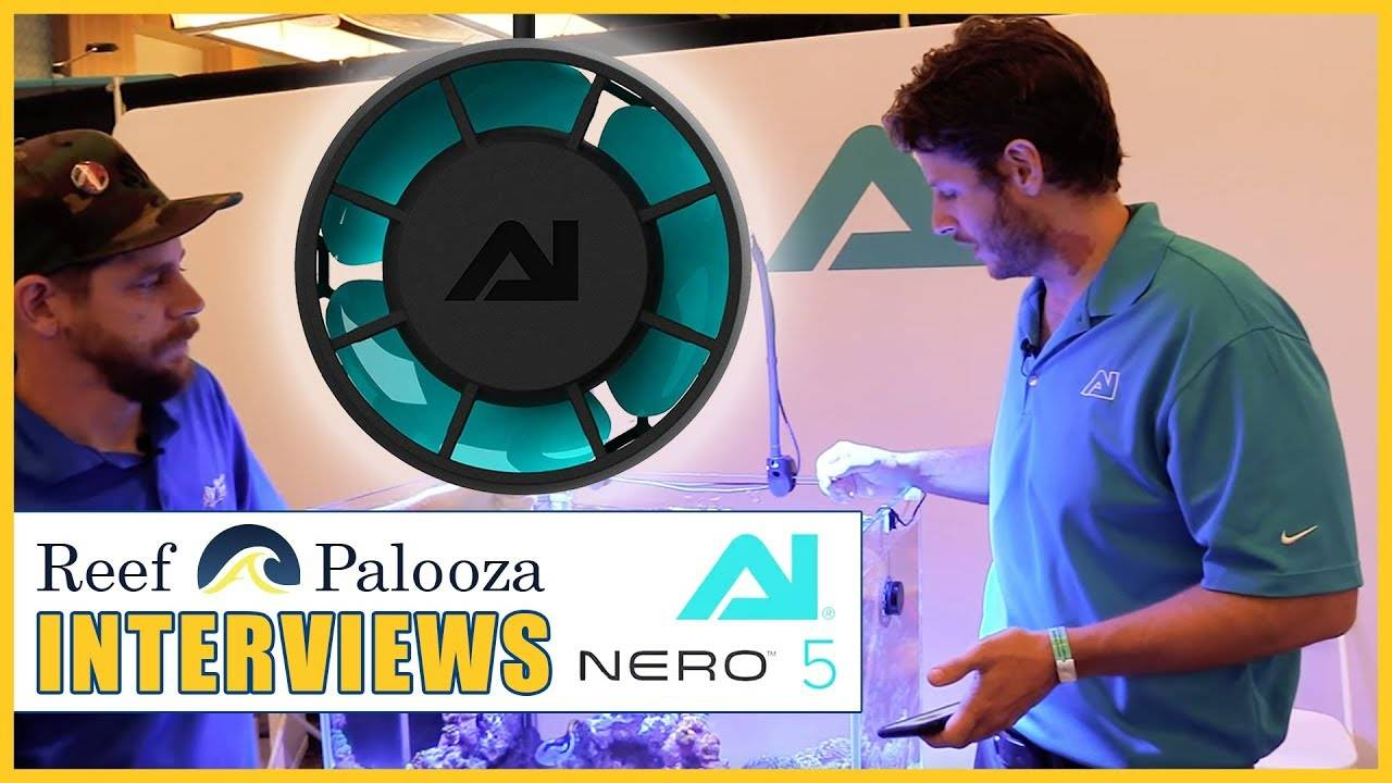 """""""Find Out How AI Made the Nero 5 Pump So Compact and Powerful - Patrick Clasen"""