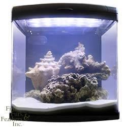 JBJ Nano Cube LED Aquarium