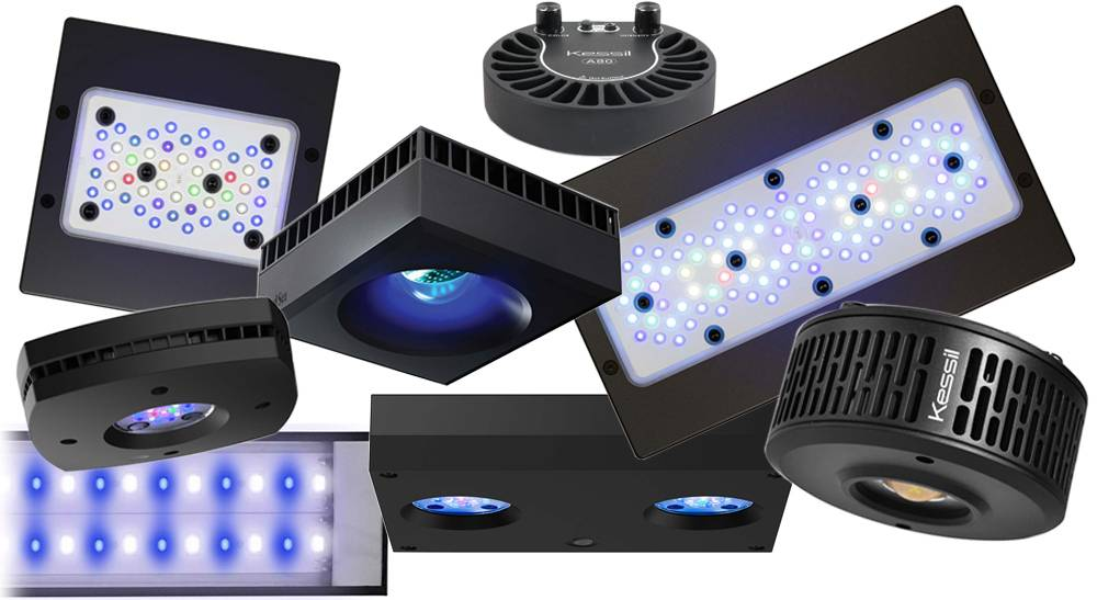 Different LED lighting fixtures for chasing par numbers in reef aquariums
