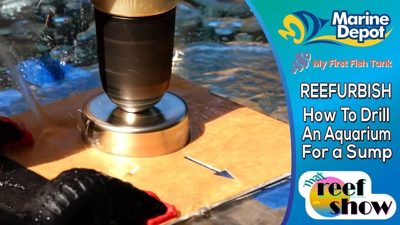 """How to Drill an Aquarium: Plumbing a Sump! That Reefshow Segment"