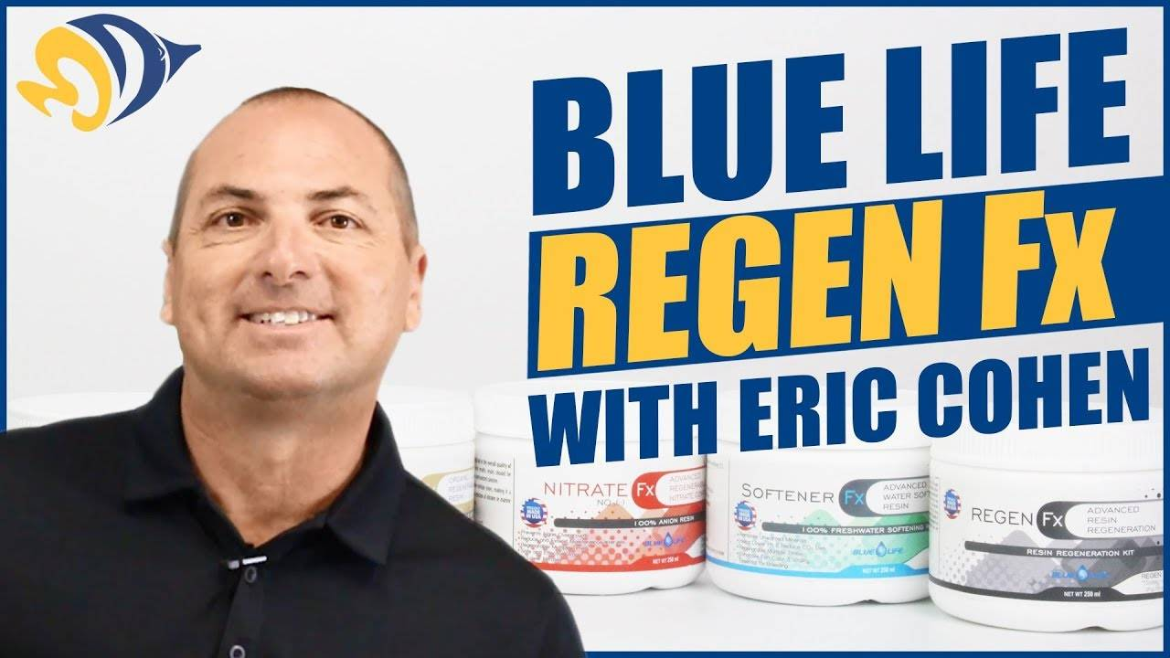 How to Regenerate Your Filter Media (6x or more!) featuring Eric Cohen from Blue Life USA