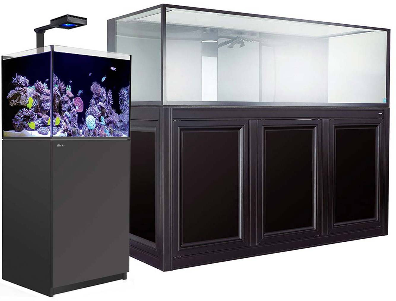 Examples of aquariums suitable for wrasses