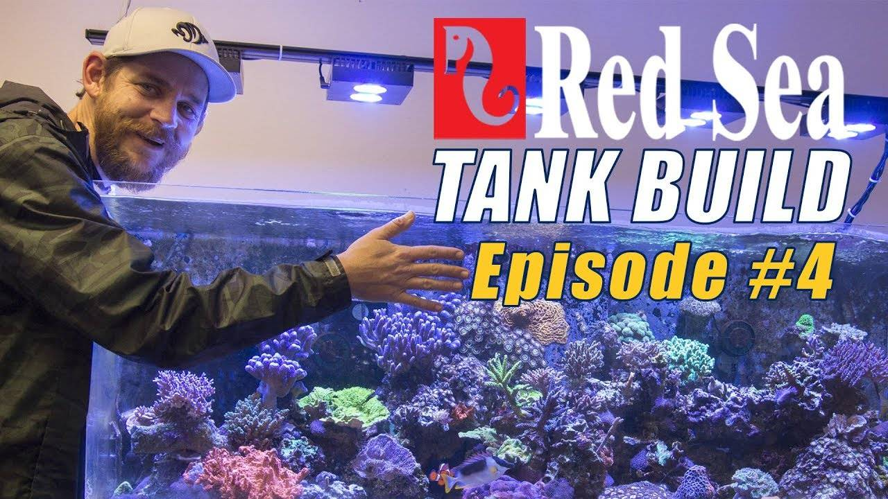 Reefer Deluxe 525 XL Tank Build #4: GHL ProfiLux 4 Controller Setup and Mounting