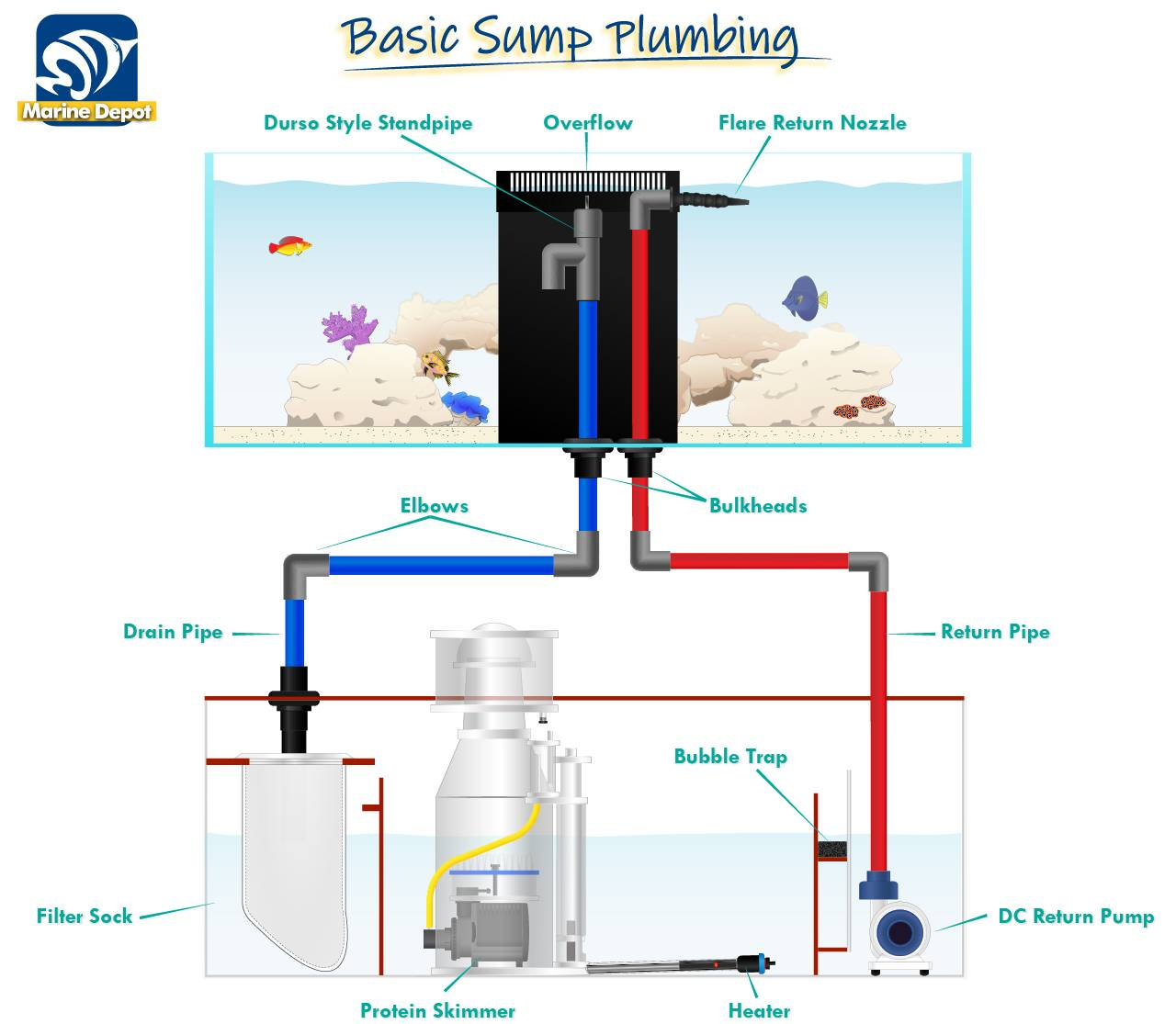 Basic Sump