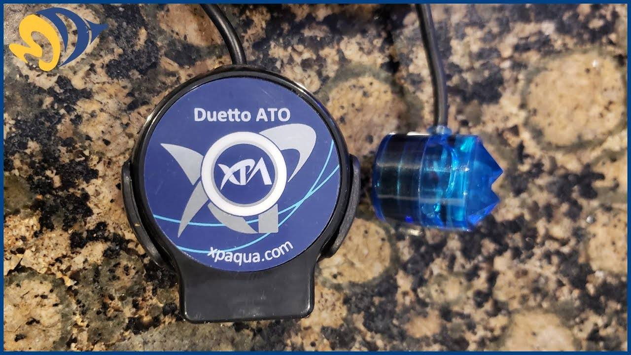 FIRST LOOK: XP Aqua Sumpless ATO Auto Top-Off System