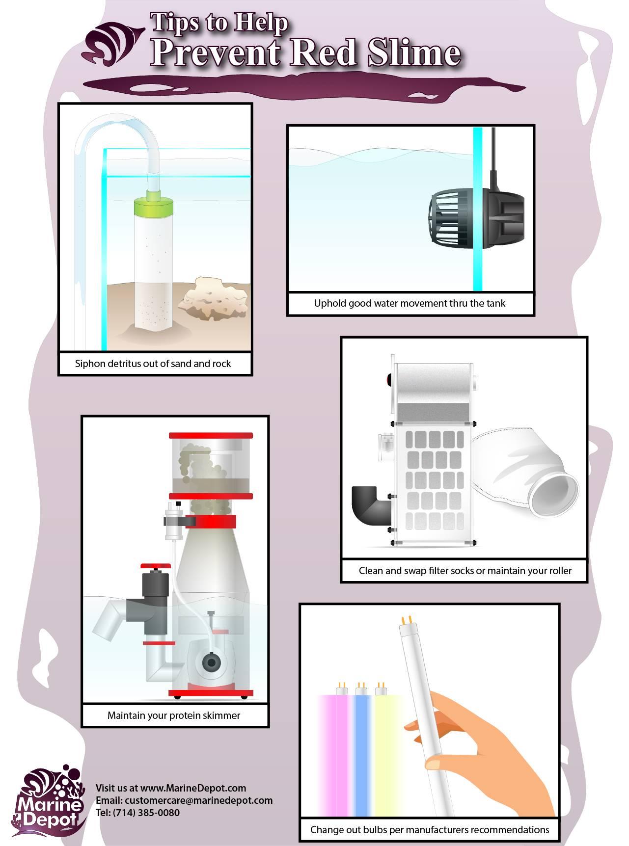 Red slime prevention tips diagram