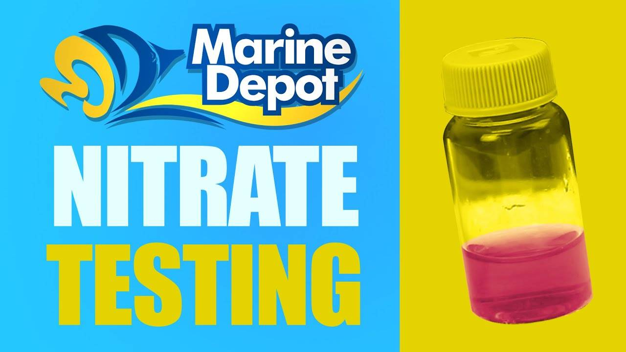 How Nitrate Test Kits Work: The Science Behind the Test!