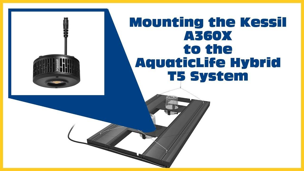 Kessil A360X and AquaticLife Hybrid T5 Fixture Mounting