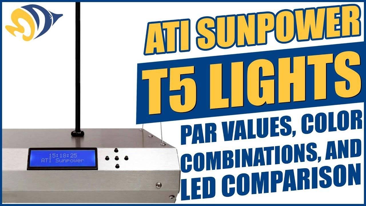 """ATI SunPower T5 Lights: PAR Values"