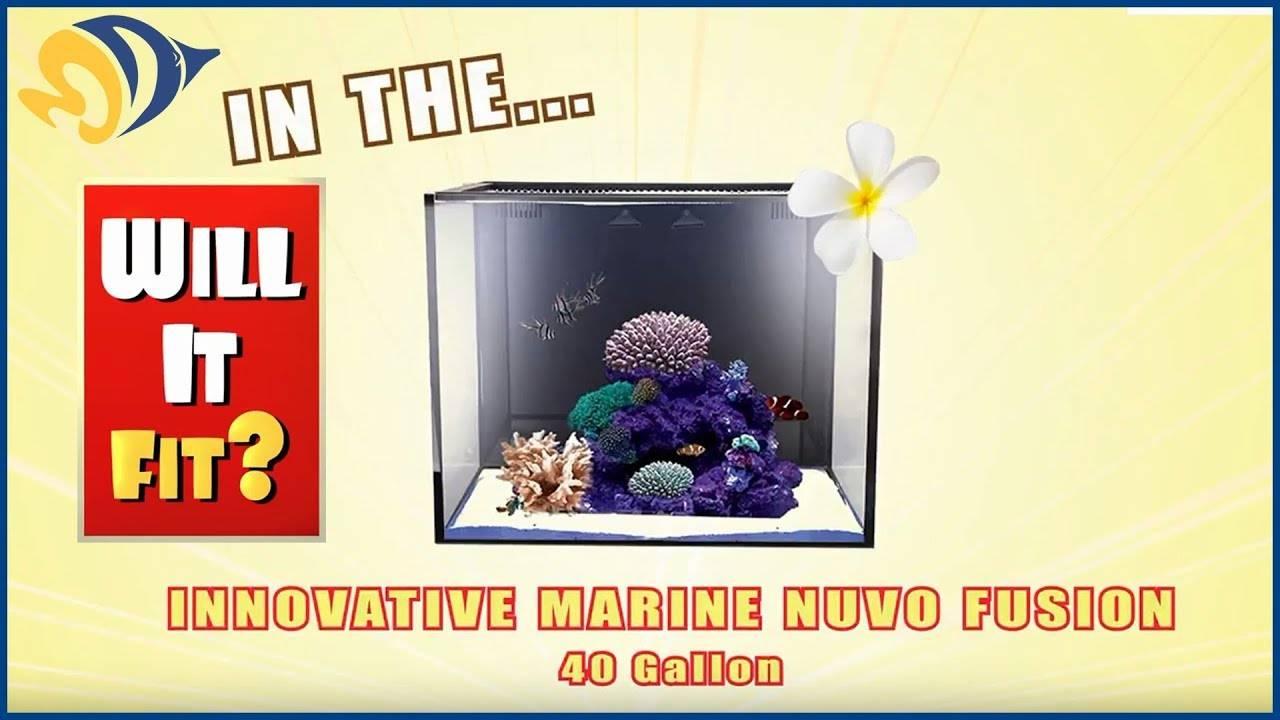 Will It Fit? - Innovative Marine NUVO Fusion Mini 40 Gallon Aquarium