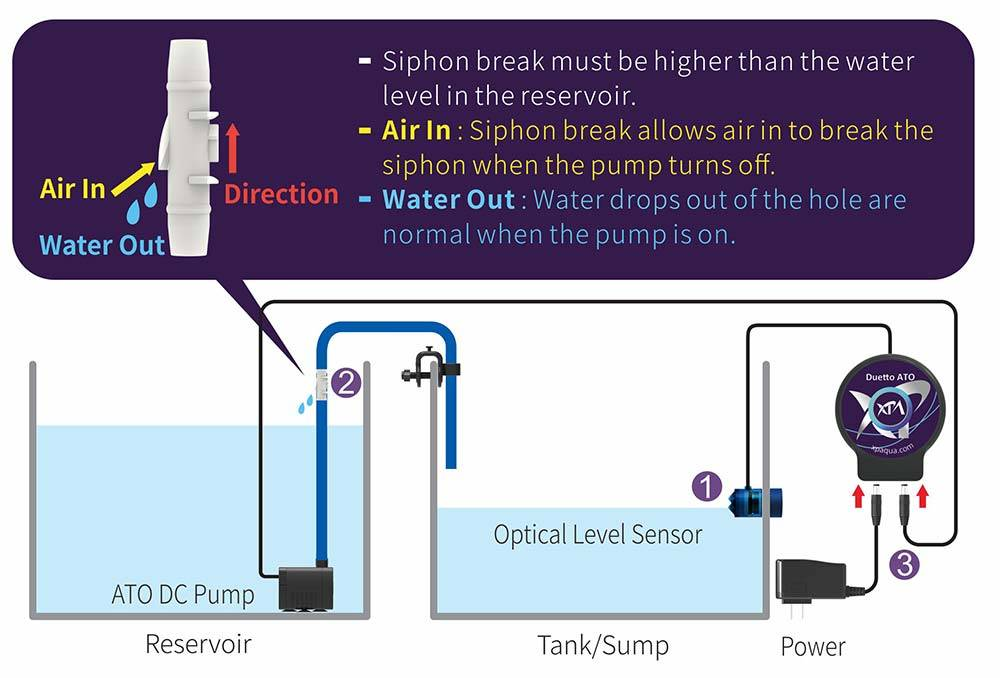 ATO system installation diagram in preparation of foreseen evaporation during vacation