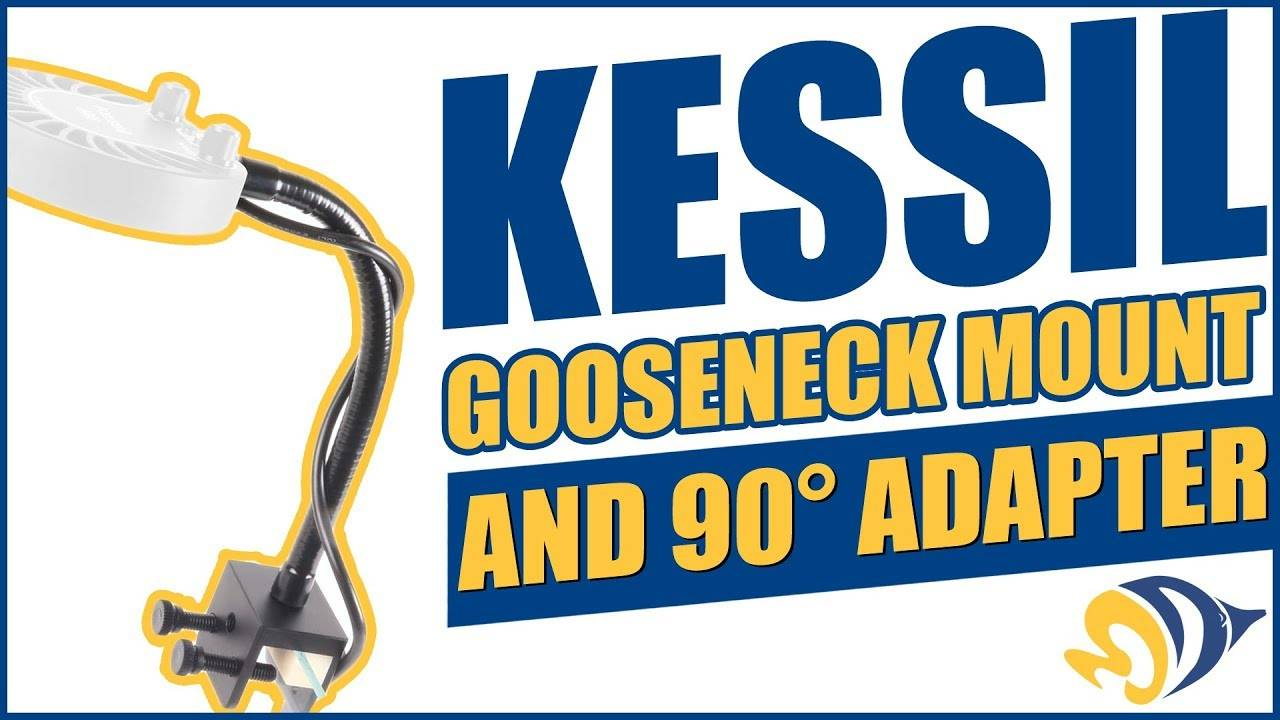 Kessil Gooseneck Mount and 90° Adapter: What YOU Need to Know