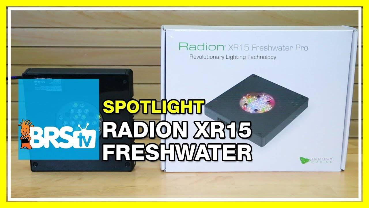 Spotlight on Ecotech Radion XR15 Freshwater LEDs for Refugium - BRStv