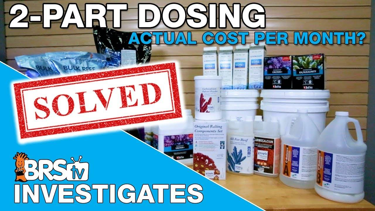 2-part dosing your reef tank. What does it actually cost each month? - BRStv Investigates