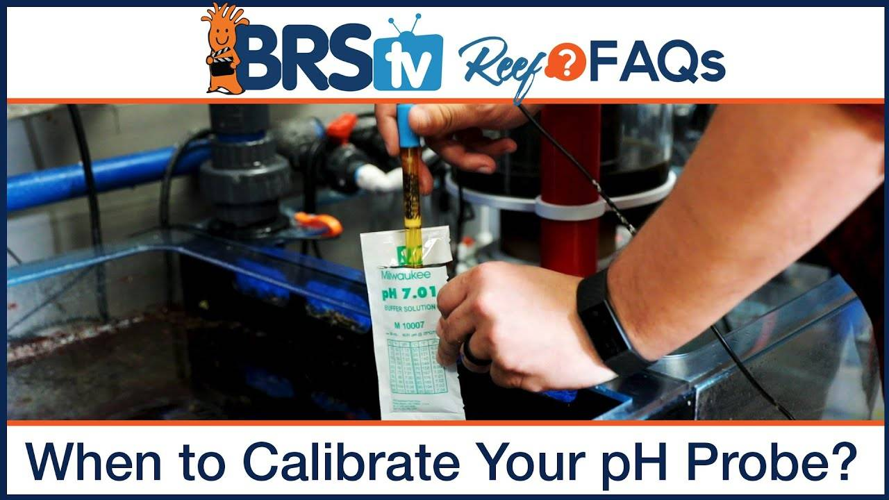 Reef tank pH: When should I calibrate my pH probe for an aquarium pH monitor or controller? - BRStv Reef FAQs