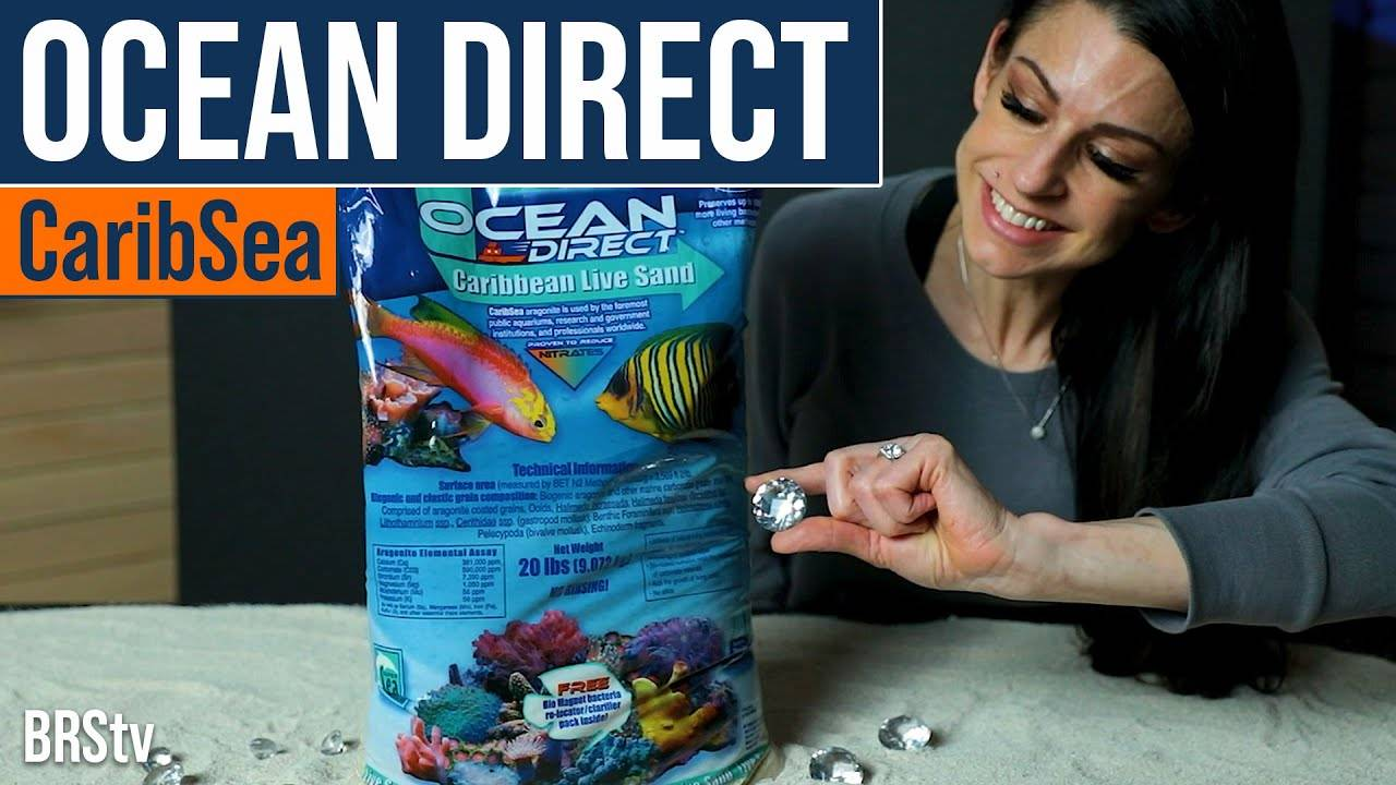 BRStv Product Spotlight - CaribSea Ocean's Direct Live Aquarium Sand
