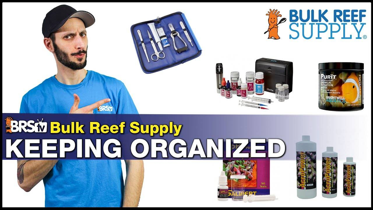 Tips to Keeping Organized for Easier Reefing. Three Ways to Change Your Reef Tank Tasks for Good
