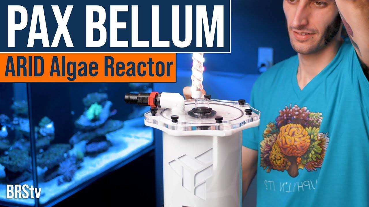 BRStv Product Spotlight - Pax Bellum A.R.I.D. N-Series Macroalgae Reactor