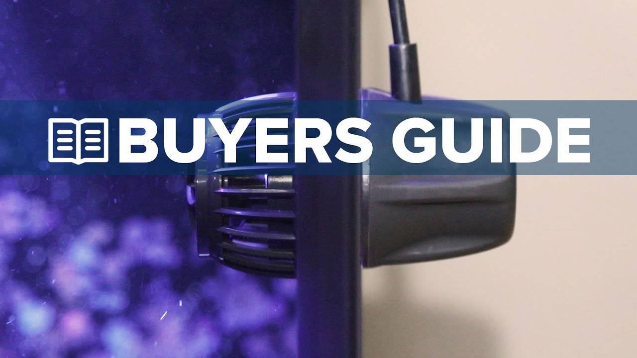 BRStv Buyers Guide To Powerheads