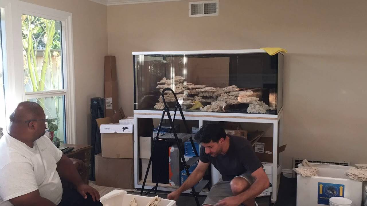 Reef Saver Foundation and Shelf Rock - Aquascaping with Joe from Unique Corals - Time Lapse 2