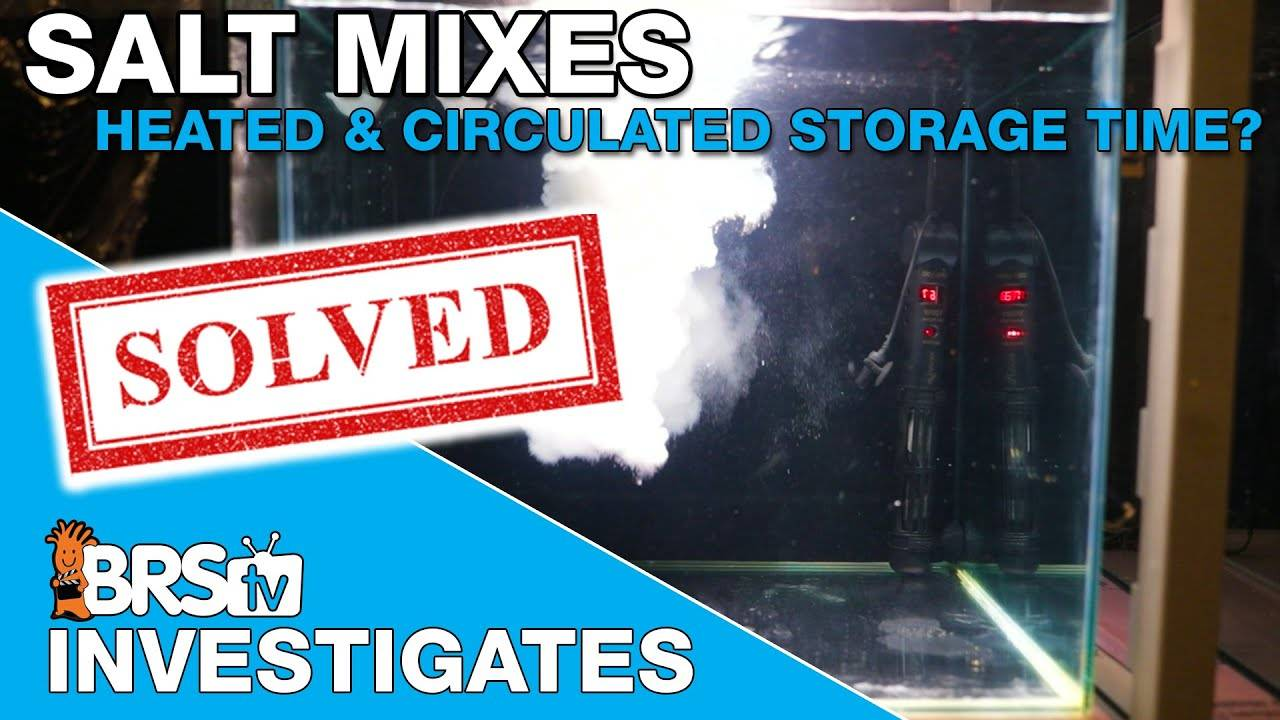 Heated and circulated premixed saltwater storage, how long will it last? - BRStv Investigates