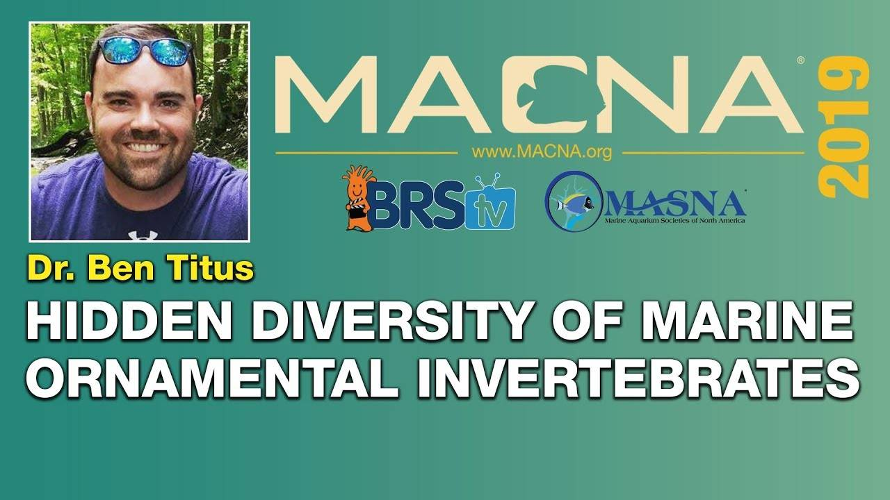 Dr. Ben Titus : Are we keeping cryptic undescribed species in our saltwater tanks? | MACNA 2019