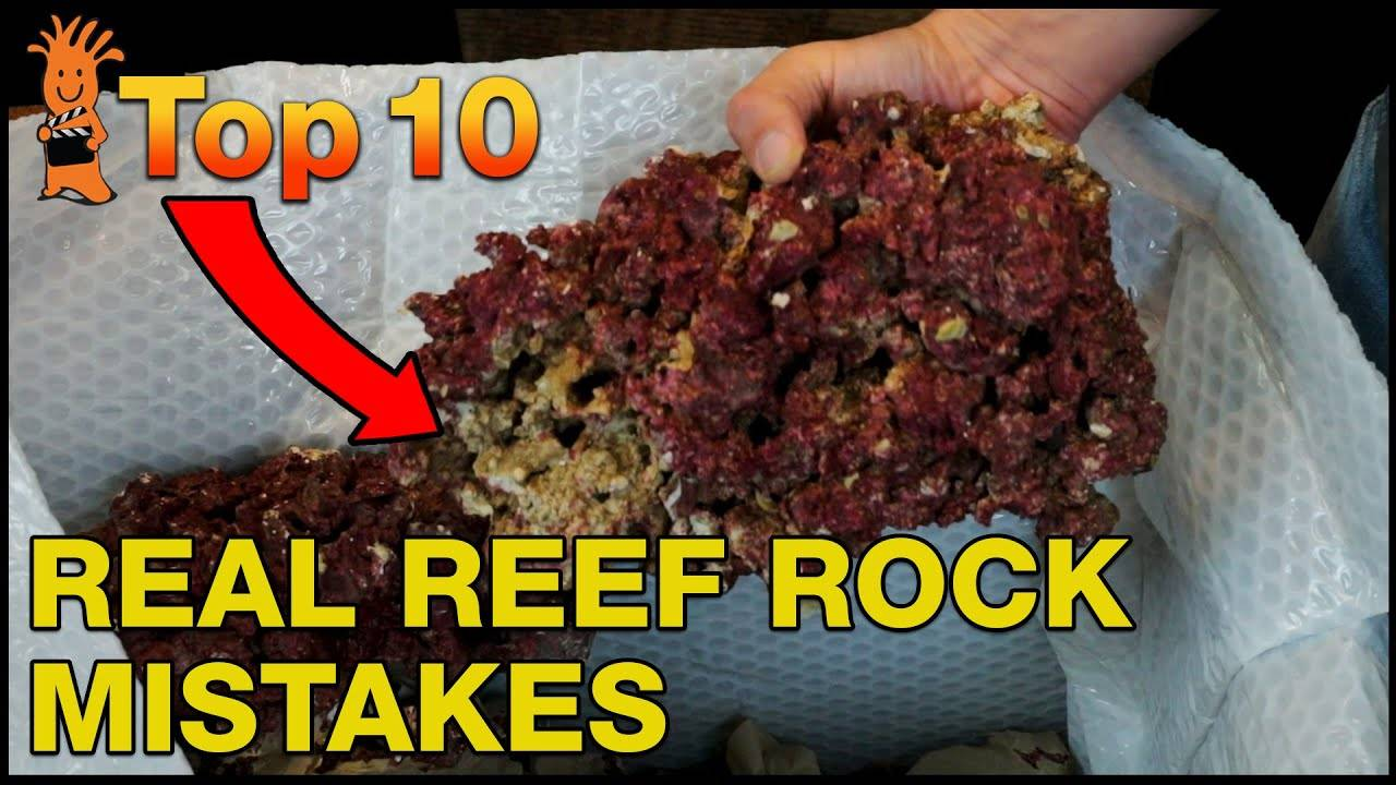 Top Real Reef Live Rock Mistakes