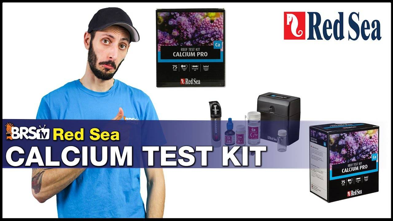 Red Sea Calcium Test Kit for Your Reef Tank : Our Top Choice for Testing Calcium for Your Corals