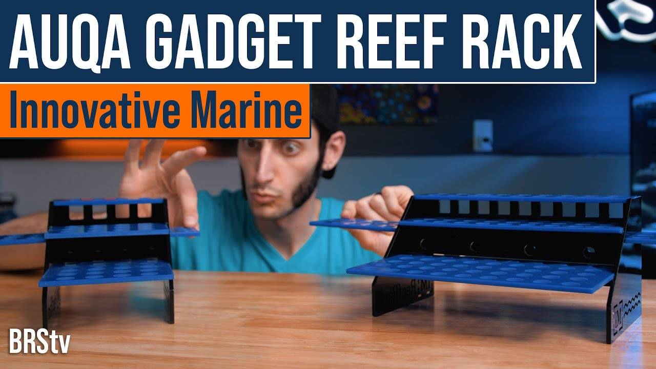 BRStv Product Spotlight - Innovative Marine Auqa Gadget Reef Rack