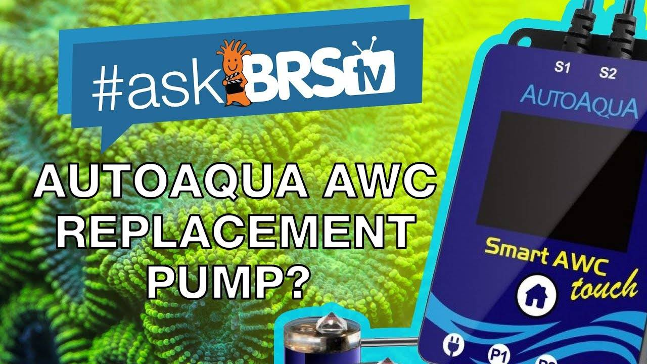 Can you replace the pumps on the Auto Aqua Auto Water Changer? - #AskBRStv