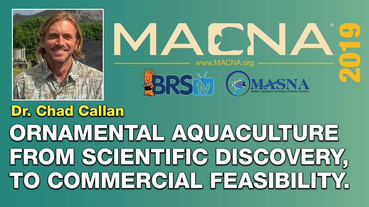Dr. Chad Callan: Using captive bred aquacultured to reduce pressure on the wild. | MACNA 2019