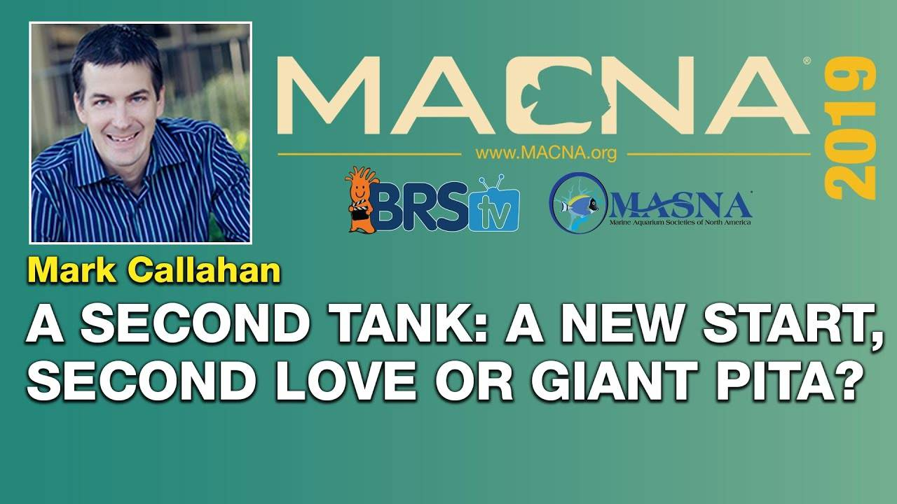Mark Callahan: A second tank? Exciting new start or giant pain? | MACNA 2019