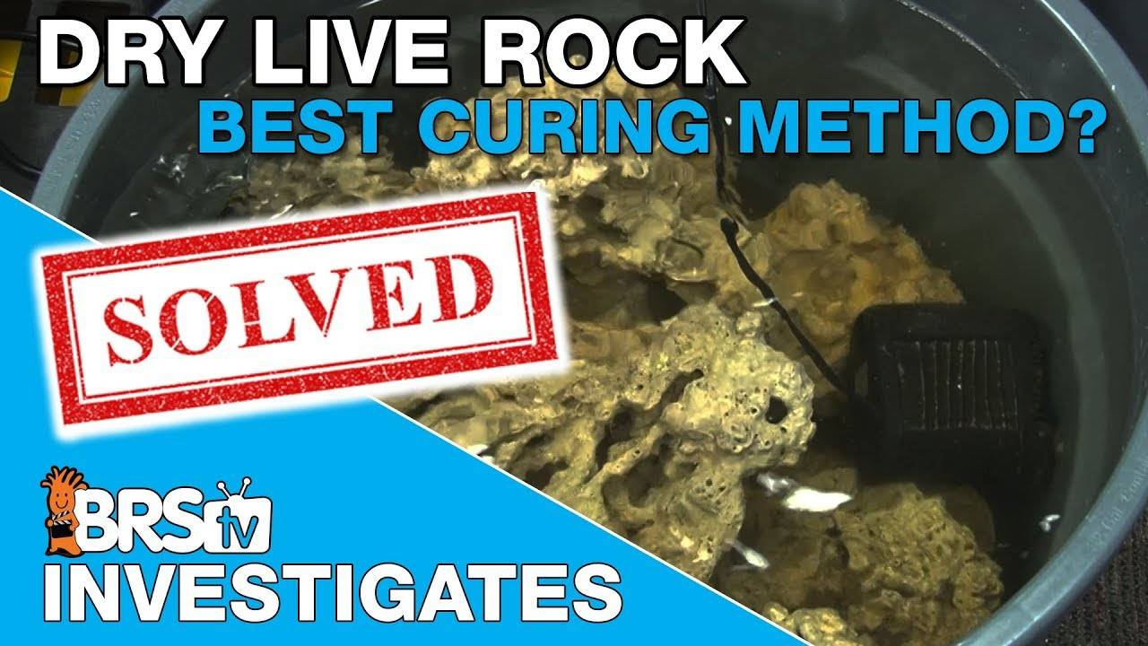 BRStv Investigates: What is the best way to cure dry live rock?