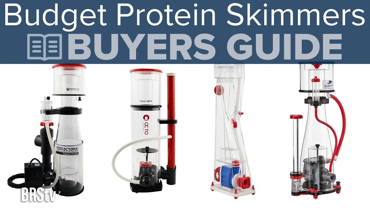 Watch Video - Top Protein Skimmers Under $300 and up to 75 Gallons of Reef Tank - BRStv Buyer's Guide