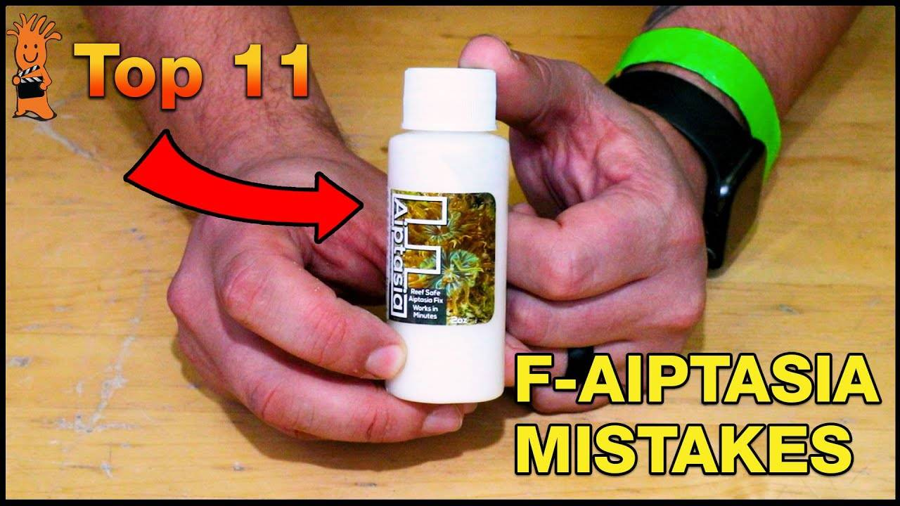 Try These F-Aiptasia Tips to Help Make Aiptasia Removal From Your Reef Tank a Success