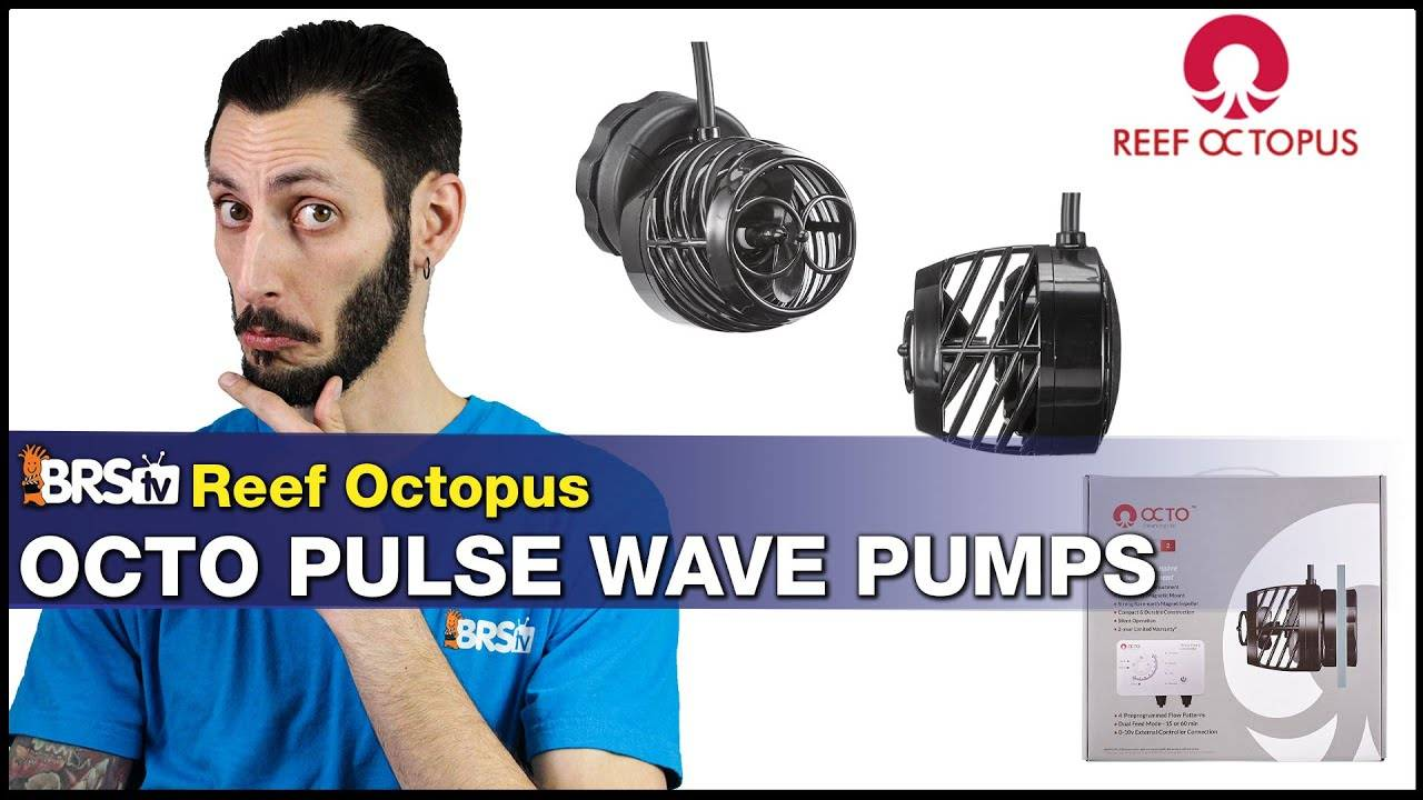 BRStv Product Spotlight- Reef Octopus Octo Pulse Powerheads