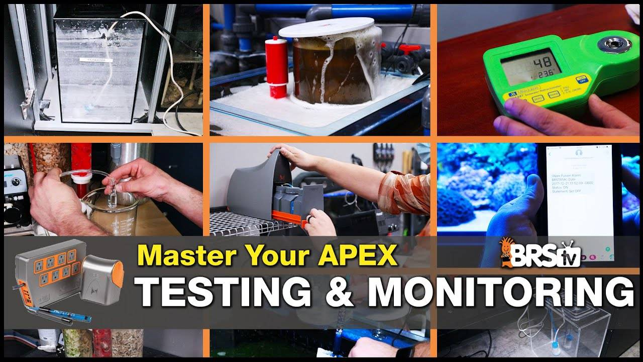 Master Monitoring Your Reef Tank With A Neptune Systems Apex