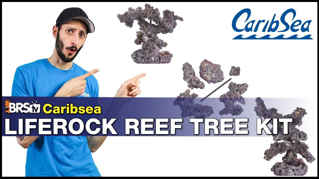 BRStv Product Spotlight Caribsea Liferock Reef Tree Kit