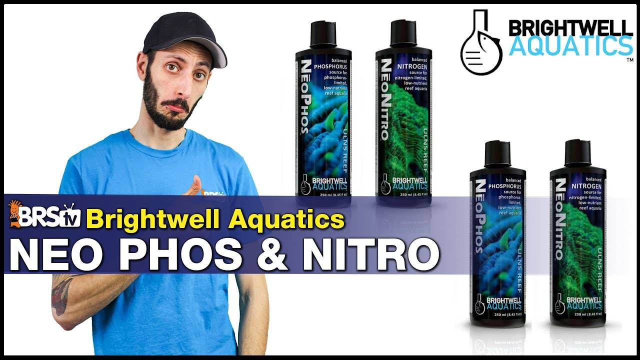 BRStv Product Spotlight Brightwell Aquatics NeoNitro and NeoPhos