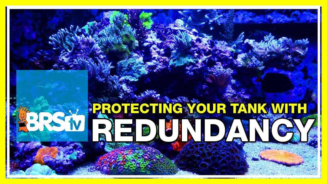 Week 4: Planning a Safer Tank with Redundancy | 52 Weeks of Reefing #BRS160
