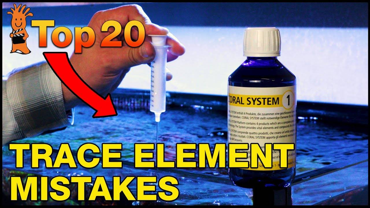 Top 20 Trace Elements Mistakes