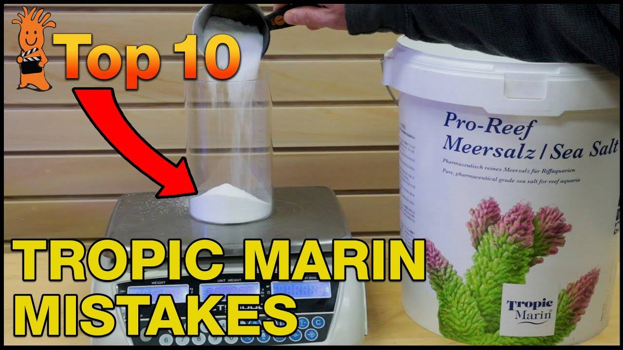Top Mistakes Using Tropic Marine Salt Mix