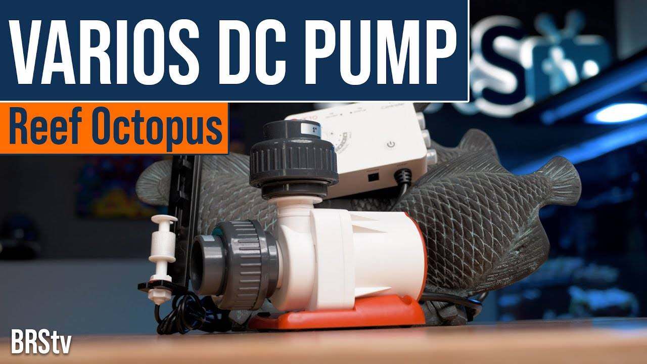 BRStv Product Spotlight Reef Octopus VarioS Controllable DC Water Pump