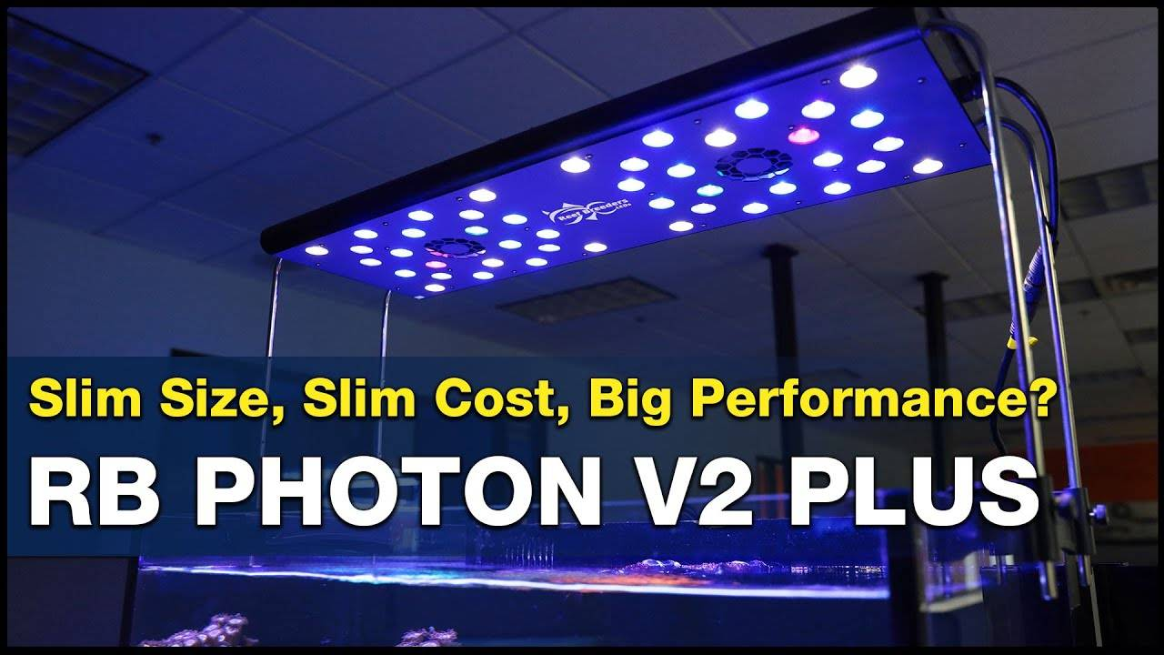 Is the Reef Breeders Photon V2 Plus the low cost SPS light you've been looking for?