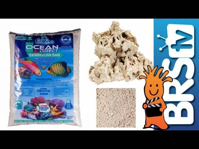 Saltwater Basics - Water, Rock & Sand